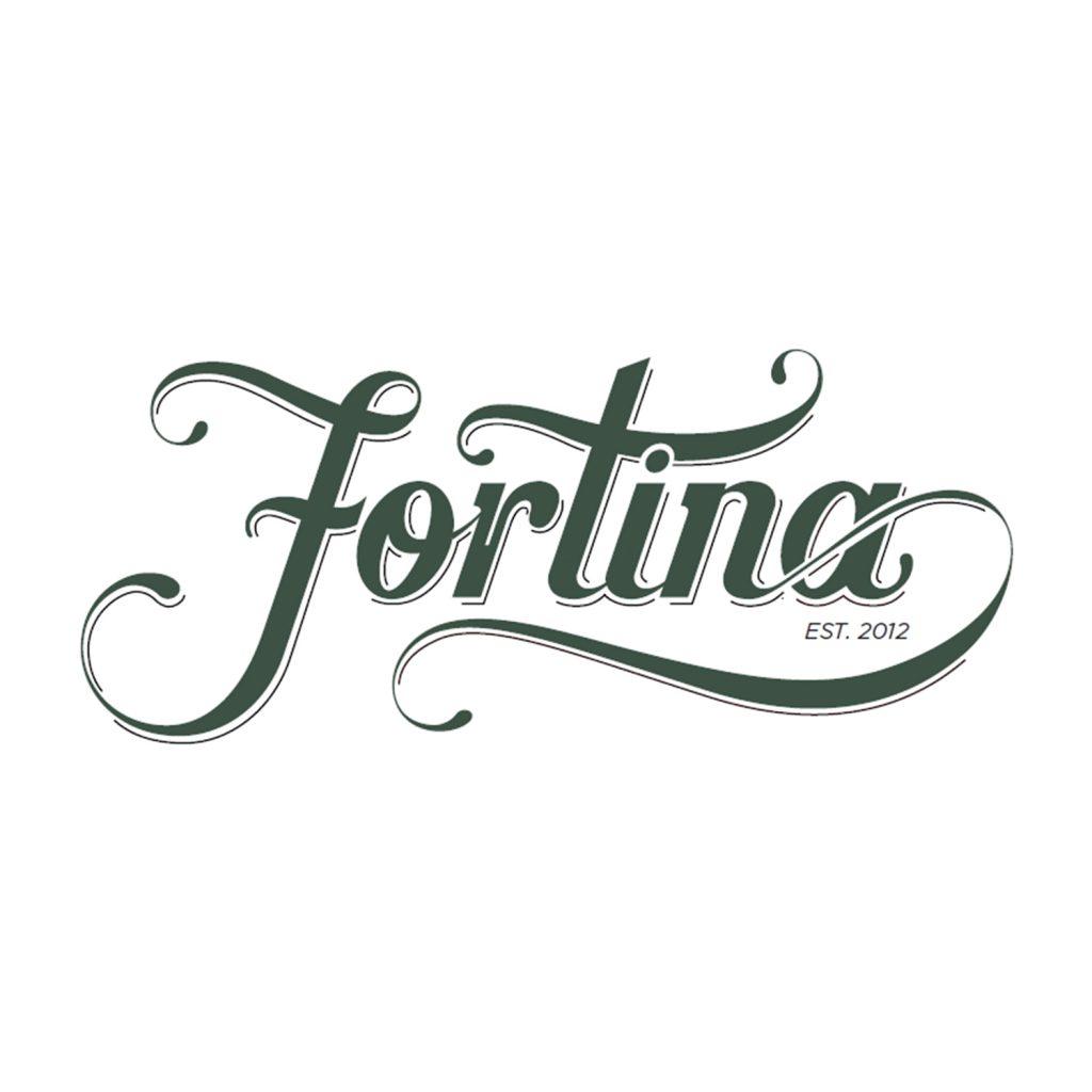 logo-fortina.jpg
